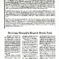 njit-naa-2009-0021-a.pdf